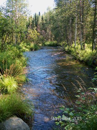Campbell-Creek