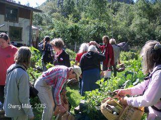 Class-in-Michael's-garden