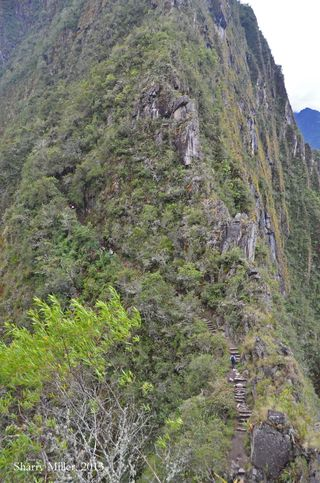 Huayna-Picchu-trail-up