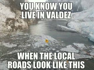 Live in Valdez road