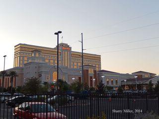Las Vegas For Rowan Sharry Miller