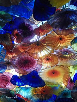 Chihuly-detail