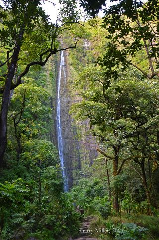 Pipiwai-Trail-final-waterfall