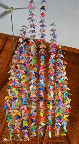 1000-cranes