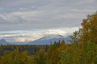 Mt.-Denali